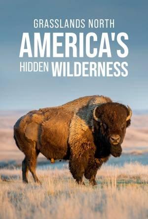Grasslands: North America's Hidden Wilderness (2019)
