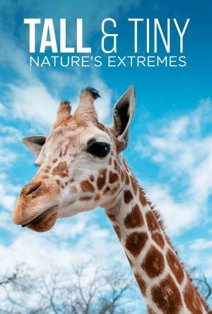 Tall & Tiny: Nature's Extremes (2018)