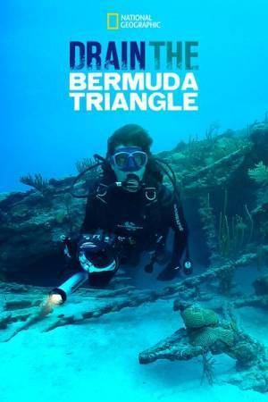 Drain the Bermuda Triangle (2014)