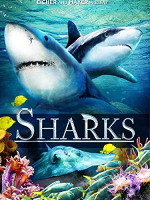 Sharks (in 3D) (2012)