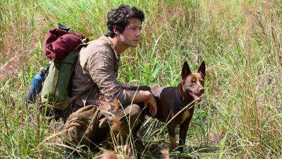 Dylan O'Brien te zien in trailer 'Love and Monsters'