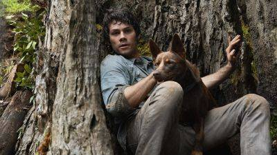 'Love and Monsters' met Dylan O'Brien komt in 2021 rechtstreeks naar Netflix