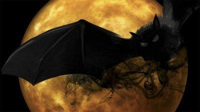 Universal koopt filmrechten van vampierenroman 'Crave'