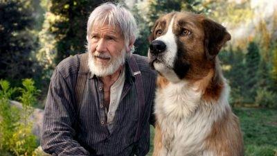 Avontuurlijke familiefilm 'The Call of the Wild' met Harrison Ford nu te zien op Disney+