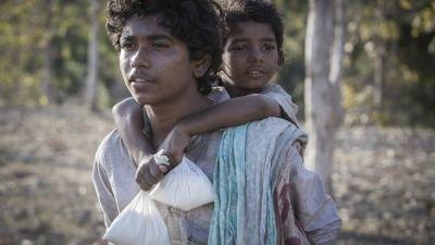 Vanavond op tv: Oscargenomineerde dramafilm 'Lion' met Dev Patel en Nicole Kidman