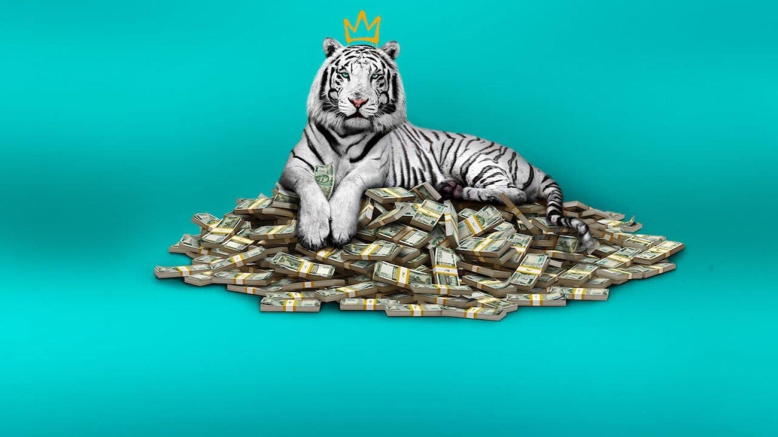 Dramafilm 'The White Tiger' nu te zien op Netflix