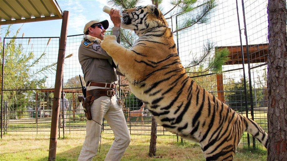 'Tiger King'-ster Carole Baskin heeft weinig vertrouwen in seizoen 2