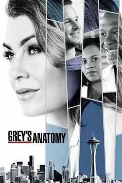 Grey's Anatomy (2005–)