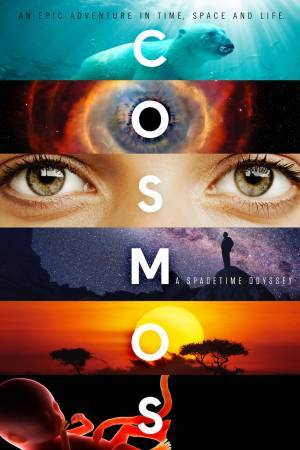 Cosmos: A Spacetime Odyssey (2014– )