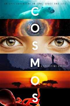 Cosmos: A Spacetime Odyssey (2014–2020)