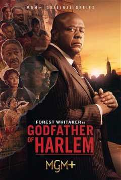 Godfather of Harlem (2019–)