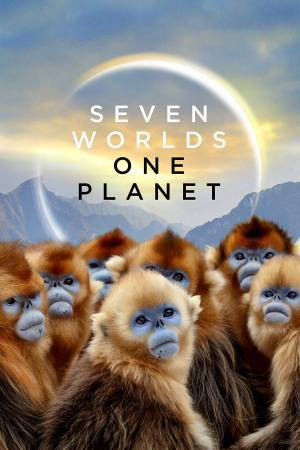 Seven Worlds, One Planet (2019)