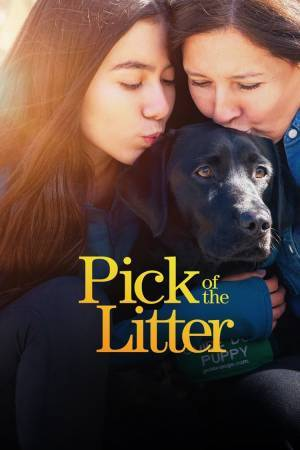 Pick of the Litter (2019– )