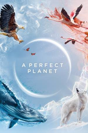 A Perfect Planet (2021–)