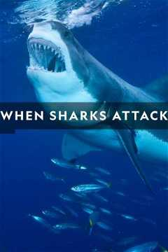 When Sharks Attack (2013–)