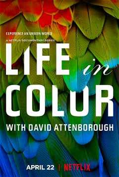 Life in Colour with David Attenborough (2021)