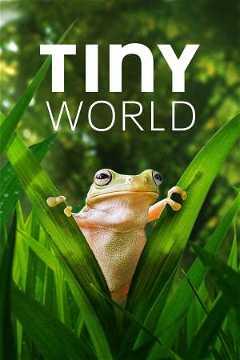 Tiny World (2020–2021)